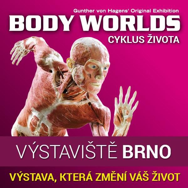 BODY WORLDS - CYKLUS ŽIVOTA - VIP OPEN TICKET