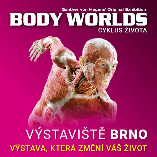 BODY WORLDS - CYKLUS ŽIVOTA