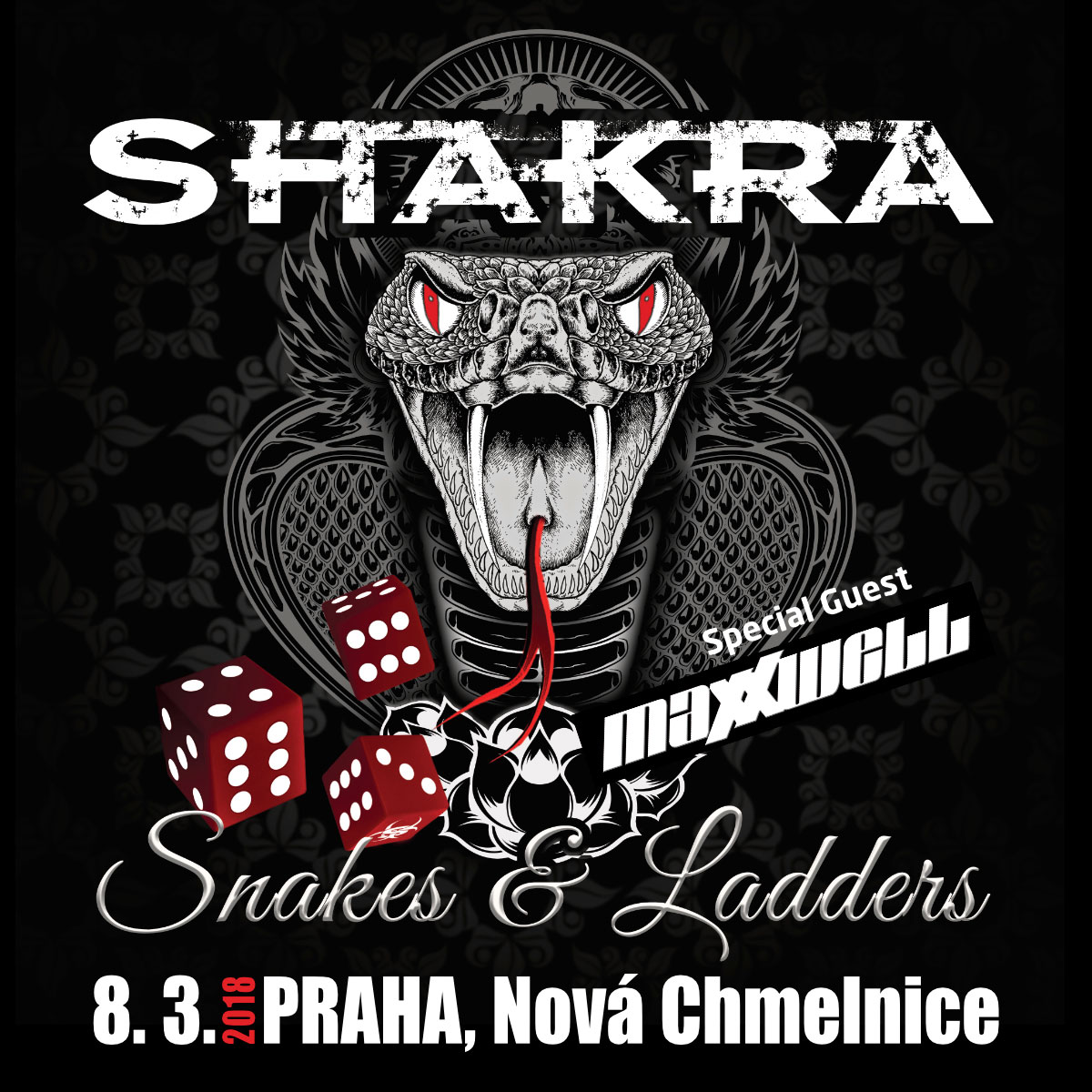 Snakes & Ladders Tour 2018